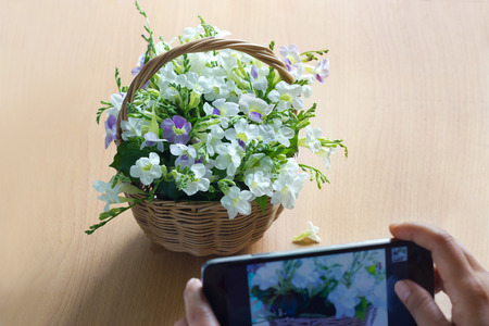 snap: Take a photo mobile white flower in basket on wooden background