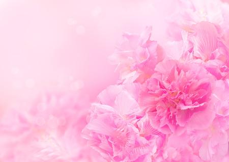 ピンクの花の背景、抽象的な大きな花、美しい花