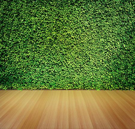 Groene bladerenmuur en houten vloer voor achtergrond Stockfoto