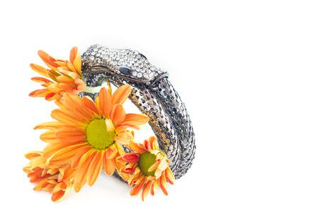 armlet: bangle silver and crytal snake shape design on vibrant flower Stock Photo