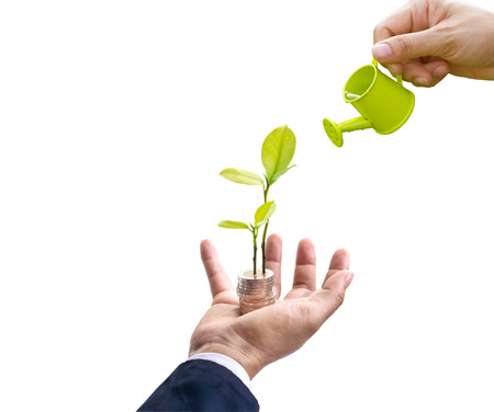 Businessman with tree and coins on hand and hand watering on top tree on white background, business concept, blank text Stock fotó