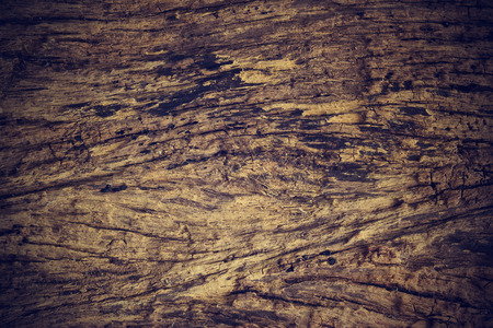 timbering: Wooden texture background, Vintage color tone