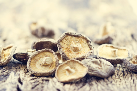 Dry Mushrooms on wooden background, Soft focus