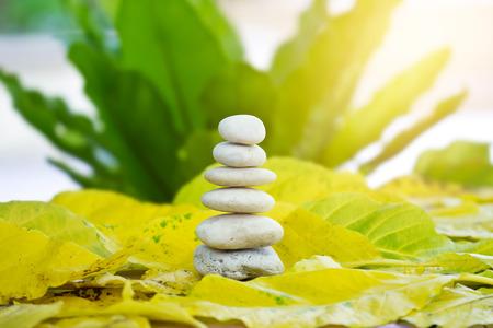 自然の背景にホワイトの禅石バランス