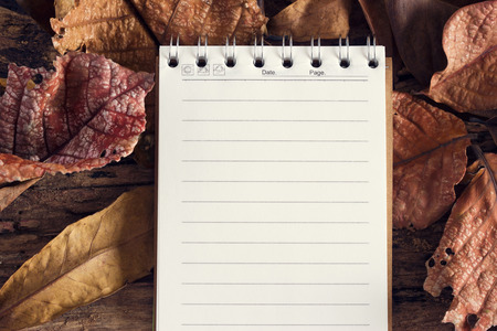 notebook paper background: Notebook paper or note pad with dry leaf in nature background