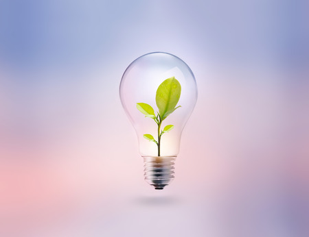 light bulb with energy and fresh green leaves inside on pastel background Reklamní fotografie