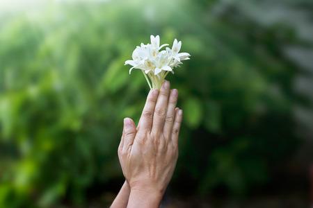 자연 배경에 손에 흰 꽃과기도하는 여자