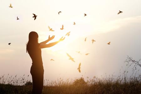 人生、自由な鳥および日没の背景、自由の概念に自然を楽しんでいる女性の自由