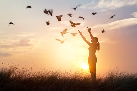 Woman praying and free bird enjoying nature on sunset background, hope concept Фото со стока