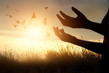 Mujer que ora y pájaro libre disfrutando de la naturaleza en el fondo la puesta del sol, el concepto de la esperanza