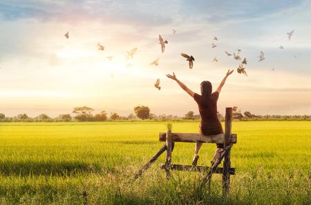 概念: 女人祈禱和自由的鳥欣賞日落背景性質,希望概念