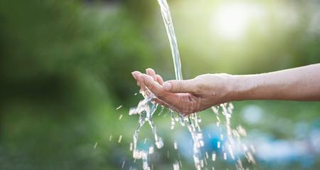 Wässern Sie das Gießen in der Frauenhand auf Naturhintergrund, Umweltfragen Standard-Bild - 70723181