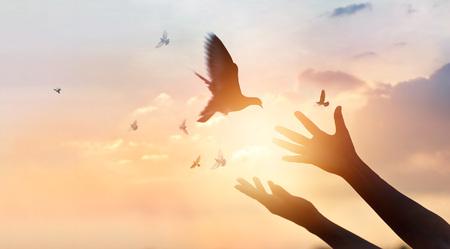 Woman praying and free bird enjoying nature on sunset background, hope concept Stockfoto