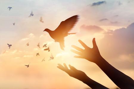 Vrouw bidden en vrije vogel die van aard op zonsondergangachtergrond genieten, hoopconcept Stockfoto