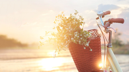 vintage bicycle with flowers in the basket on summer sunset rural background Stock Photo