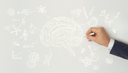 human drawing, creative brain idea concept, sciences and arts on white wall background