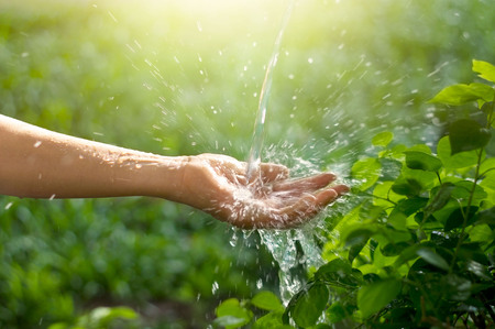 wash: Water pouring in woman hand on nature background, environment issues Stock Photo