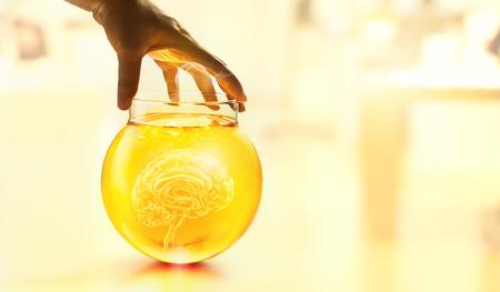 hand touching glass jar of human brain in laboratory Stock Photo