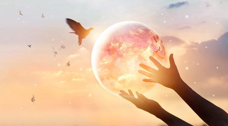 Donna che tocca il pianeta terra del consumo di energia dell'umanità di notte e uccello libero godendo la natura sullo sfondo del tramonto, spero concetto, elementi di questa immagine fornita dalla NASA Archivio Fotografico