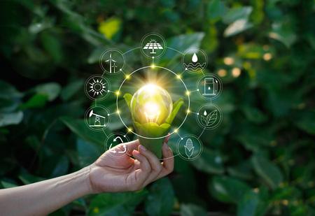 Ręki mienia żarówka przeciw naturze na zielonym liściu z ikonami energetycznymi źródłami dla odnawialnego, podtrzymywalnego rozwoju. Pojęcie ekologii. Elementy tego obrazu dostarczone przez NASA.
