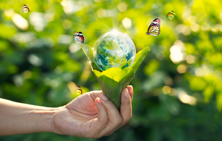 Saving energy concept, Earth day, Hand holding earth in light bulb against nature on green leaf with butterfly on green park background. Archivio Fotografico