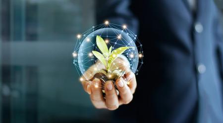 Main d'homme d'affaires avec des pièces et des germes en connexion réseau. Plante poussant sur des tas de pièces d'argent. Concept de croissance de l'argent.