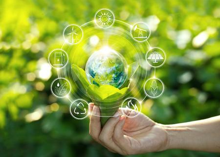 Mano che tiene la lampadina contro la natura sulla foglia verde con fonti di energia di icone per lo sviluppo rinnovabile e sostenibile. Concetto di ecologia. Elementi di questa immagine forniti dalla NASA. Archivio Fotografico