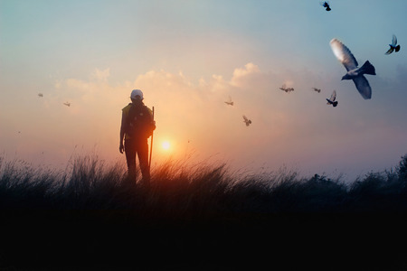 Woman with backpack enjoying sunset on grass peak hill. Bird in the sky. Tourist traveler on sunset background valley landscape. Summer holiday.