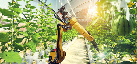 Artificial intelligence. Pollinate of fruits and vegetables with robot. Detection spray chemical. Leaf analysis and oliar fertilization. Agriculture farming technology concept. Фото со стока - 106923788