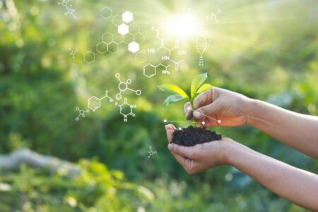 Laboratoire de biologie nature et science, Plantes à structure biochimique sur fond vert.