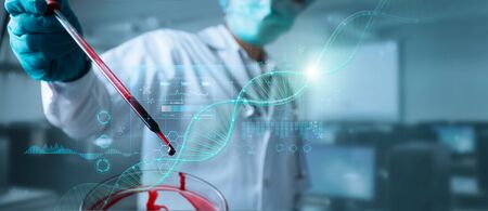 Doctor, Scientist analysis and diagnose checking blood testing result and virus infection on modern virtual interface, Healthcare and virus spreading data, Science and medical technology concept. Stockfoto