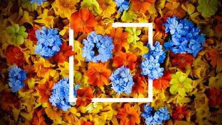 Colorful flowers background and square frame. Fresh template design for brochures, posters, flyers or vouchers and card. 版權商用圖片 - 161884144