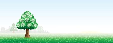 ochtend dauw: zomer landschap met een boom  Stock Illustratie