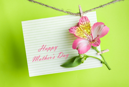 post card: pink Alstroemeria and a greeting card with the text Happy Mothers Day on a rope with clothespins against a bright green  background, greeting and love concept,