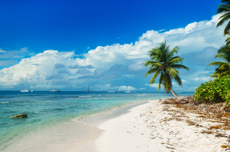 untouched: Wild untouched beach on Saona Island in the Caribbean sea, Dominican Republic, tropical landscape, palm trees, sea, blue sky, yachts Stock Photo