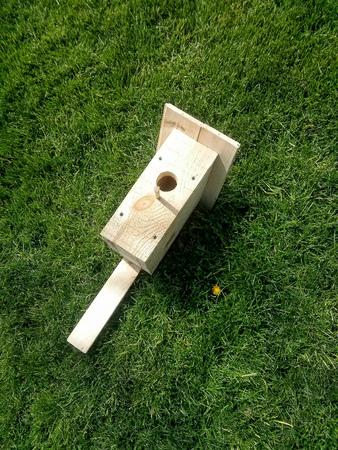 Wooden hand made birdhouse on a green grass
