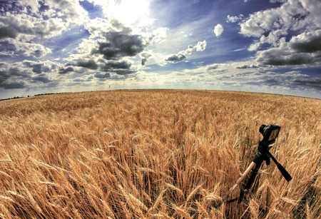 global positioning system: Shooting time-lapse with camera on tripod. Wheat field.