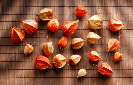 Dry red, yellow and orange flowers on wooden background Banco de Imagens
