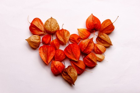 Heart of dried flowers on a white background Banco de Imagens