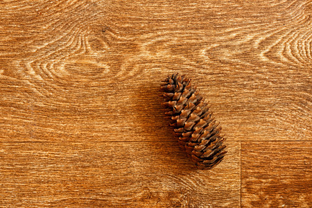One fir cone on a wooden table Banco de Imagens