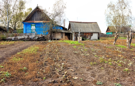 Garden in the Russian countryside near an old wooden hut.