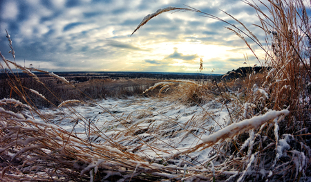 hoarfrost: Autumn meets winter. The grass-strewn snow. Sunset sky.