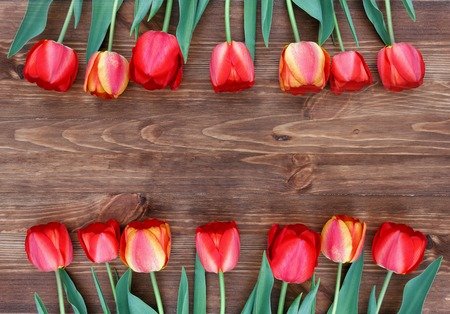 top 7: 14 tulips on a natural wooden background. Eco friendly.