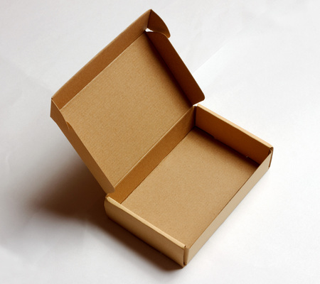 shipped: Opened cardboard box isolated on a white background