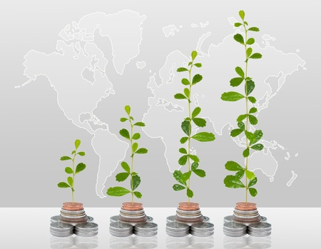 Tree growing in money on the world background  photo
