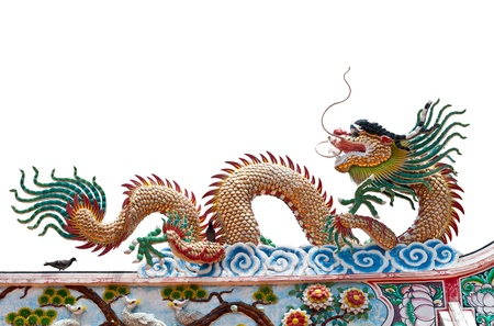 Glance of the Dragon on isolate white background photo