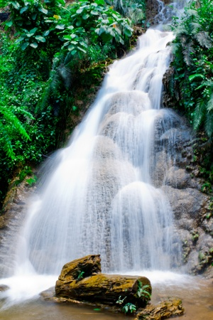Waterfall and tree ,lampang,thailand Stock Photo - 13048909