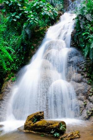 Waterfall and tree ,lampang,thailand photo