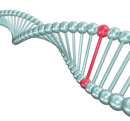 An illustration of a DNA double helix, with one highlighted in red illustration