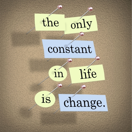 constant: Pieces of paper each containing a word pinned to a cork board reading the only constant in life is change